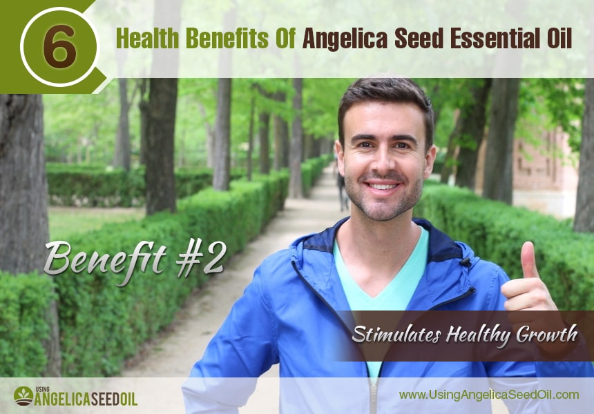 benefits of angelica essential oil