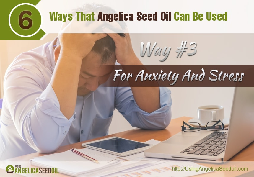angelica essential oil uses